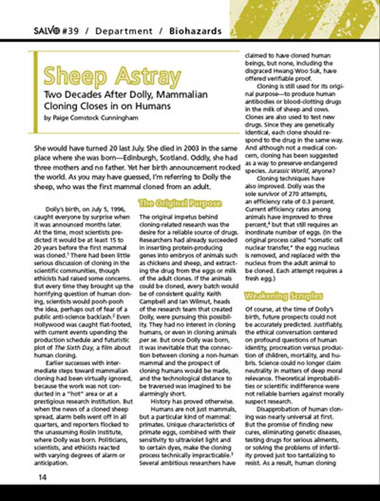 Sheep Astray Article Thumbnail